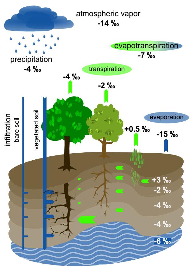 ecosystem plot.png